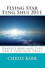 Flying Star Feng Shui 2011