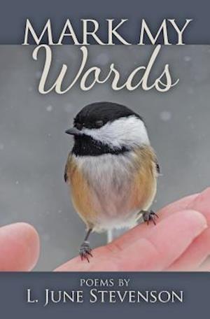 Bog, paperback Mark My Words af L. June Stevenson