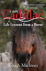 I am Cadillac: Life Lessons from a Horse