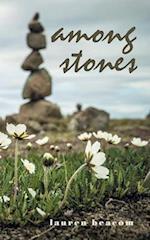 Among Stones af Lauren Beacom