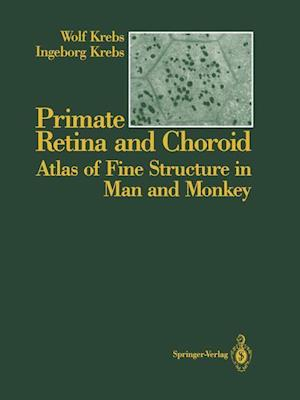 Primate Retina and Choroid : Atlas of Fine Structure in Man and Monkey