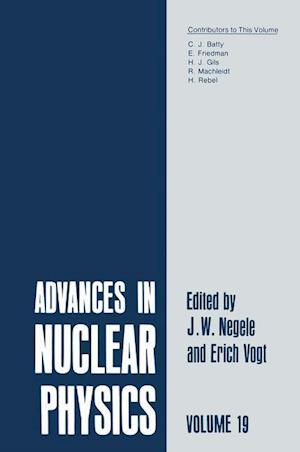 Advances in Nuclear Physics : Volume 19