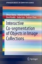 Interactive Co-Segmentation of Objects in Image Collections (Springerbriefs in Computer Science)