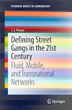 Defining Street Gangs in the 21st Century (Springerbriefs in Criminology, nr. 1)
