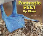 Fantastic Feet Up Close (Animal Bodies Up Close)
