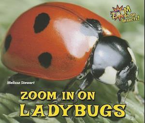 Bog, paperback Zoom in on Ladybugs af Melissa Stewart