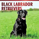 Black Labrador Retrievers 2017 Calendar af Browntrout Publishers
