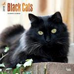 Black Cats 2018 Calendar