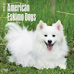 American Eskimo Dogs 2018 Calendar