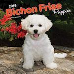 Bichon Frise Puppies 2018 Calendar