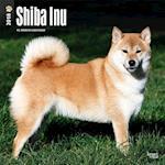 Shiba Inu 2018 Calendar af Browntrout Publishers