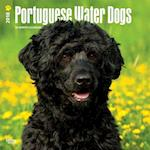 2018 Portuguese Water Dogs Wall Calendar
