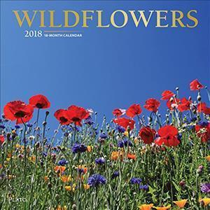 Bog, ukendt format Wildflowers 2018 Calendar af Browntrout Publishers