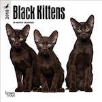 Black Kittens 2018 Calendar