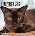 Burmese Cats 2018 Calendar