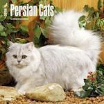 2018 Persian Cats Wall Calendar