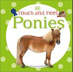 Ponies (Touch and Feel)