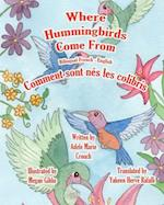 Where Hummingbirds Come from Bilingual French English
