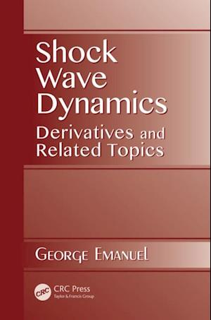 Shock Wave Dynamics