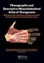 Photographic and Descriptive Musculoskeletal Atlas of Orangutans