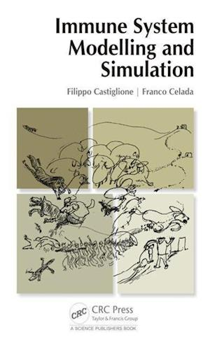 Immune System Modelling and Simulation