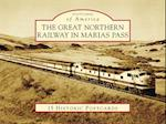 The Great Northern Railway in Marias Pass (Postcards of America)