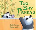 Two Shy Pandas (Andersen Press Picture Books Hardcover)