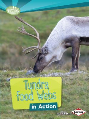 Tundra Food Webs in Action