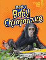 Meet a Baby Chimpanzee (Lightning Bolt Books)