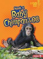 Meet a Baby Chimpanzee (Lightning Bolt Books)