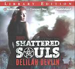 Shattered Souls (Caitlyn OConnell)