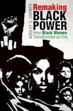 Remaking Black Power (Justice Power and Politics)