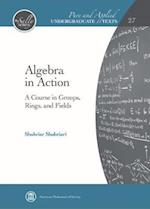 Algebra in Action (Pure and Applied Undergraduate Texts)