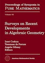 Surveys on Recent Developments in Algebraic Geometry (PROCEEDINGS OF SYMPOSIA IN PURE MATHEMATICS)