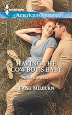 Having the Cowboy's Baby