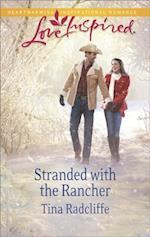 Stranded with the Rancher (Mills & Boon Love Inspired) af Tina Radcliffe
