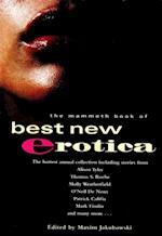 Mammoth Book of Best New Erotica: Volume 4 (Mammoth Books)