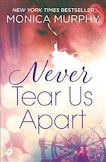Never Tear Us Apart: Never Series 1 (Never Series, nr. 1)