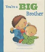 You're a Big Brother (Picture Books)
