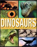Family Reference Guide Dinosaurs