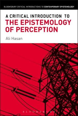Critical Introduction to the Epistemology of Perception