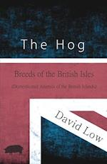 The Hog - Breeds of the British Isles (Domesticated Animals of the British Islands)