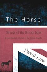 The Horse - Breeds of the British Isles (Domesticated Animals of the British Islands)