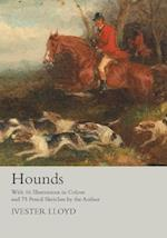 Hounds - With 16 Illustrations in Colour and 75 Pencil Sketches by the Author