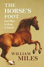 Horse's Foot and How to Keep it Sound