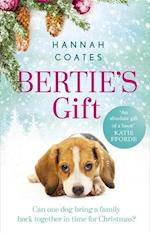Bertie's Gift: a heartwarming tale to fall in love with this Christmas