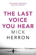 Last Voice You Hear (Zoe Boehm Thrillers)