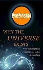 Why the Universe Exists (Instant Expert)