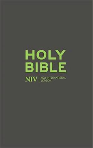 NIV Popular Soft-tone Bible with Zip