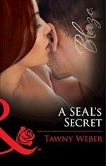 SEAL's Secret (Mills & Boon Blaze) (Uniformly Hot!, Book 58)
